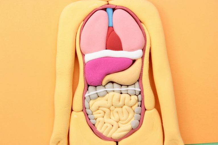 5.3消化器・胃腸科の主な対象疾患